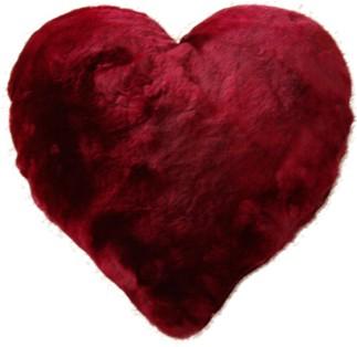 Heartfelpa.jpg