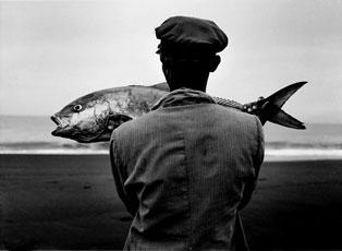 peix.jpg