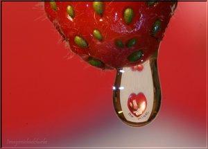 20070528200430-20060309233531-valentine-drop-resubmit-by-restlessphotographer.jpg